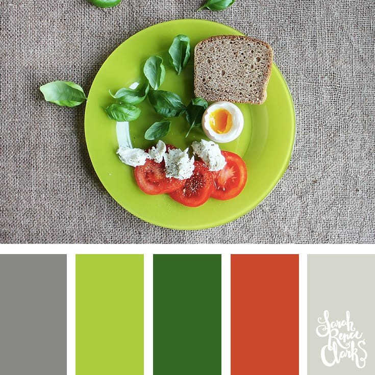 30 Color Palettes Inspired by the Pantone Spring 2017 Color Trends   See all 30 color schemes for inspiration at http://sarahrenaeclark.com