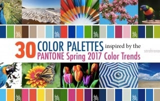 30 Color Palettes Inspired by the Pantone Spring 2017 Color Trends | See all 30 color schemes for inspiration at https://sarahrenaeclark.com