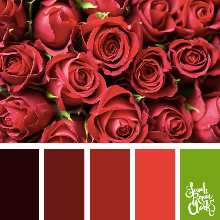 20 Color Ideas For Valentine's Day | See all 20 color schemes for inspiration at http://sarahrenaeclark.com