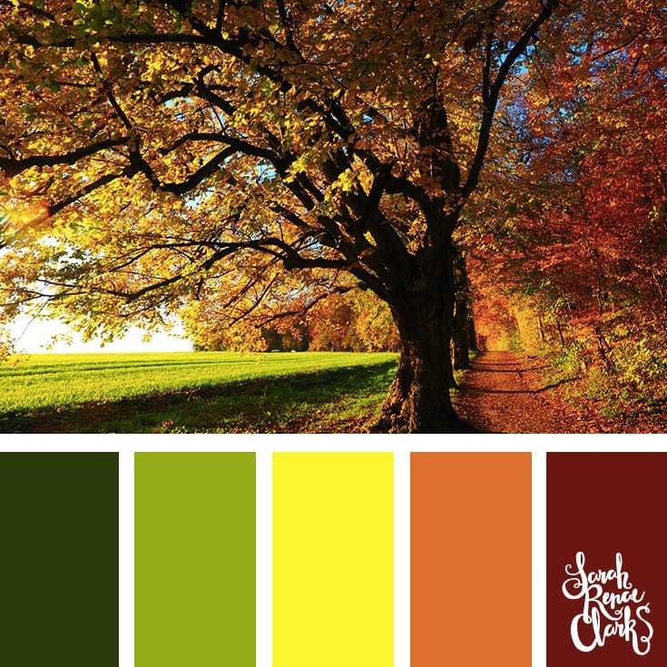 I love the color combination in this Autumn color palette | Click for more color combinations inspired by beautiful landscapes and other coloring inspiration at https://sarahrenaeclark.com | Colour palettes, colour schemes, color therapy, mood board, color hue