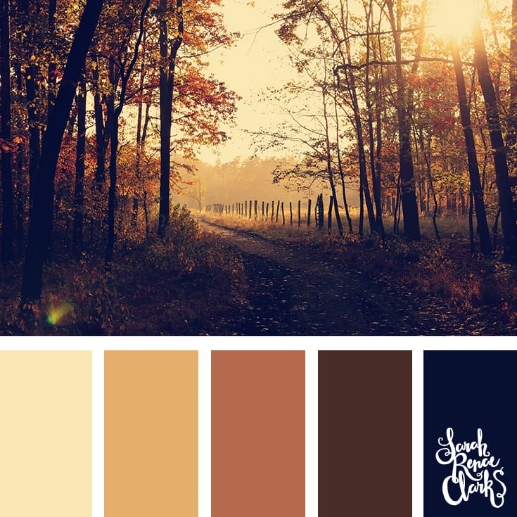 Wanderlust color scheme - I love the warm atmosphere in this beautiful color combination! | Click for more color palettes inspired by beautiful landscapes and other coloring inspiration at https://sarahrenaeclark.com | Colour palettes, colour schemes, color therapy, mood board, color hue