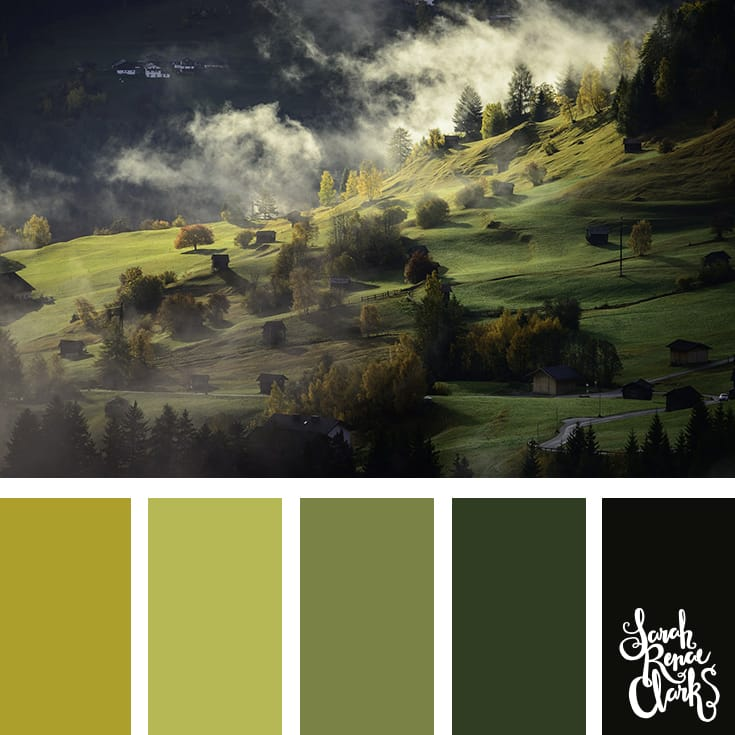 Moody color palette inspired by the green mountainside... just stunning! | Click for more color combinations inspired by beautiful landscapes and other coloring inspiration at https://sarahrenaeclark.com | Colour palettes, colour schemes, color therapy, mood board, color hue