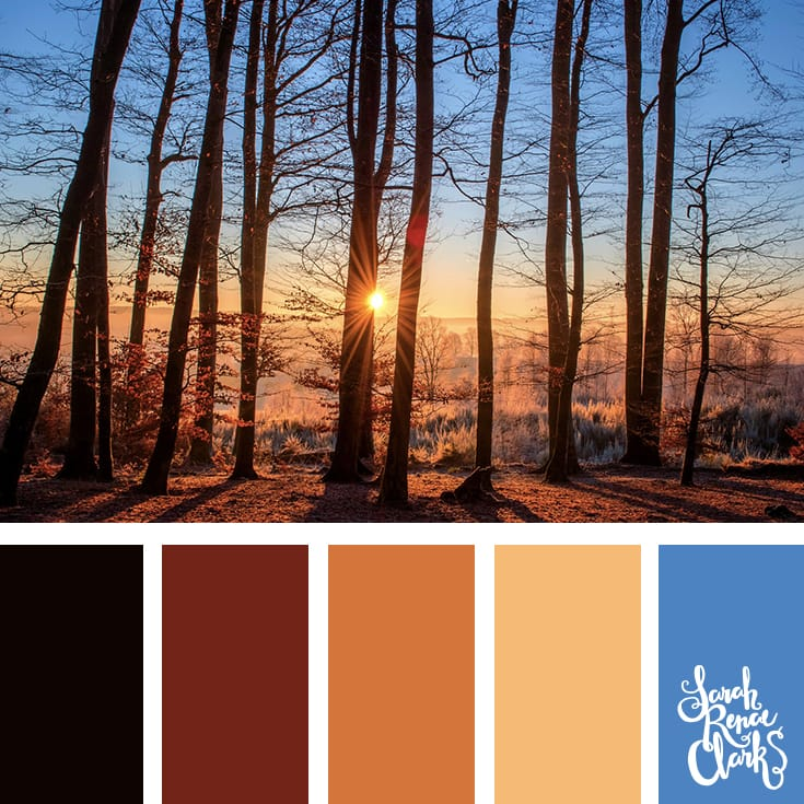 Wanderlust color palette - Get lost in the forest... I love the warm mood of this color scheme | Click for more color combinations inspired by beautiful landscapes and other coloring inspiration at https://sarahrenaeclark.com | Colour palettes, colour schemes, color therapy, mood board, color hue