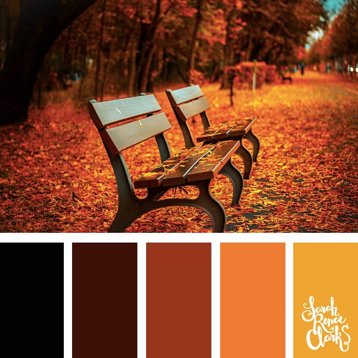 Color inspiration from falling Autumn leaves - beautiful red, orange, brown and yellow color palette | Click for more color combinations inspired by beautiful landscapes and other coloring inspiration at http://sarahrenaeclark.com | Colour palettes, colour schemes, color therapy, mood board, color hue