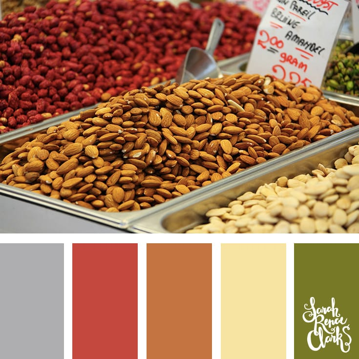 Color Inspiration from nuts | Click for more color combinations and color palettes inspired by the Pantone Fall 2017 Color Trends, plus other coloring inspiration at http://sarahrenaeclark.com | Colour palettes, colour schemes, color therapy, mood board, color hue