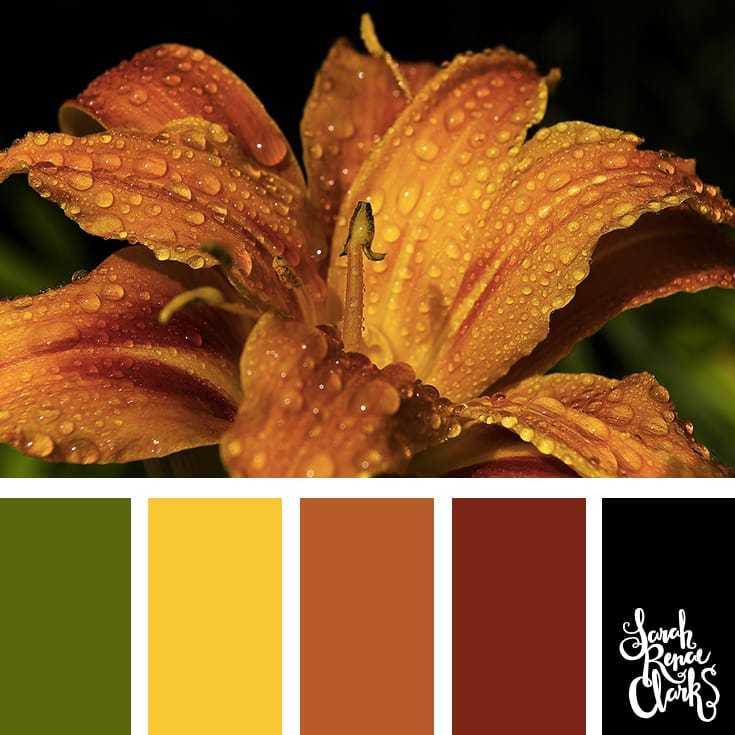 Autumn color Inspiration | Click for more color combinations and color palettes inspired by the Pantone Fall 2017 Color Trends, plus other coloring inspiration at http://sarahrenaeclark.com | Colour palettes, colour schemes, color therapy, mood board, color hue