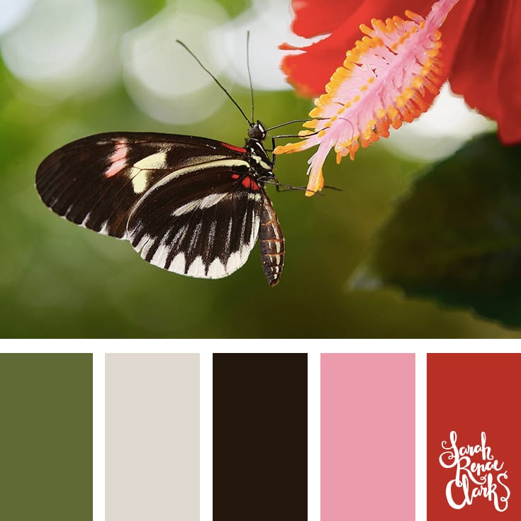 Colors inspired by nature | Click for more color combinations and color palettes inspired by the Pantone Fall 2017 Color Trends, plus other coloring inspiration at http://sarahrenaeclark.com | Colour palettes, colour schemes, color therapy, mood board, color hue