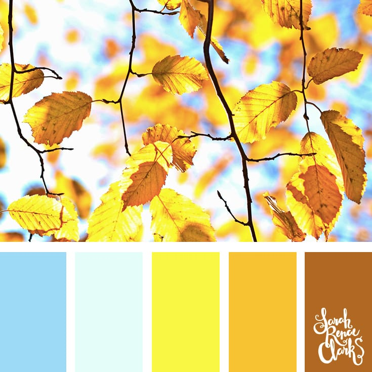 Beautiful Autumn color scheme | Click for more fall color combinations, mood boards and seasonal color palettes at http://sarahrenaeclark.com