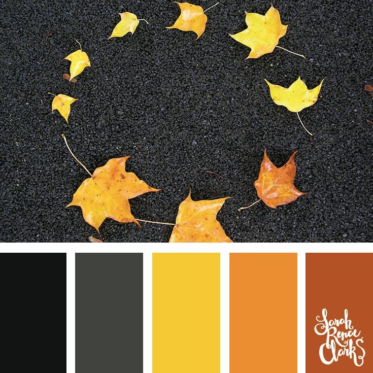 Autumn leaves | Click for more fall color combinations, mood boards and seasonal color palettes at http://sarahrenaeclark.com
