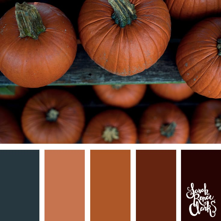 Autumn pumpkins color palette | Click for more fall color combinations, mood boards and seasonal color palettes at http://sarahrenaeclark.com