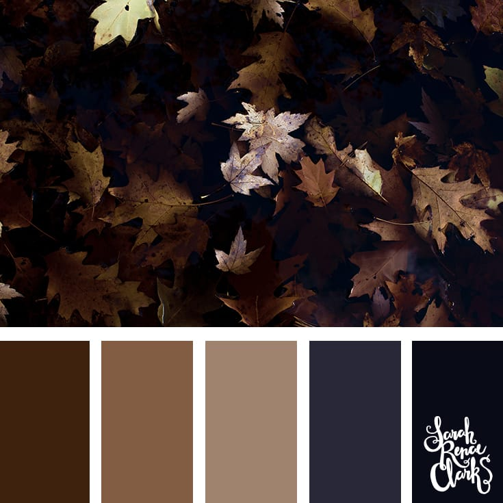 Dark Autumn color scheme | Click for more fall color combinations, mood boards and seasonal color palettes at http://sarahrenaeclark.com
