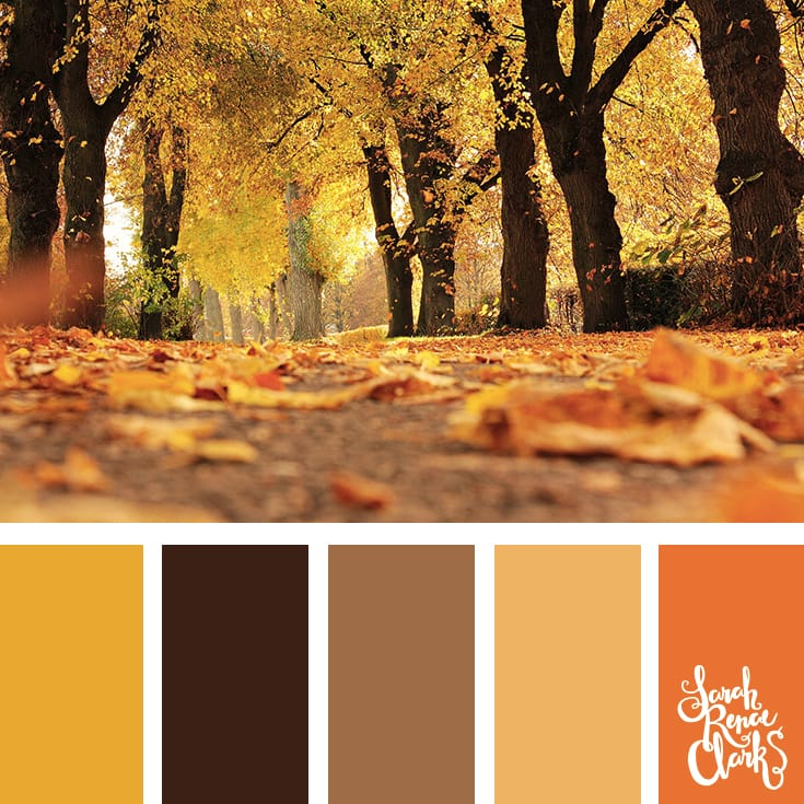 Warm Autumn hues | Click for more fall color combinations, mood boards and seasonal color palettes at http://sarahrenaeclark.com