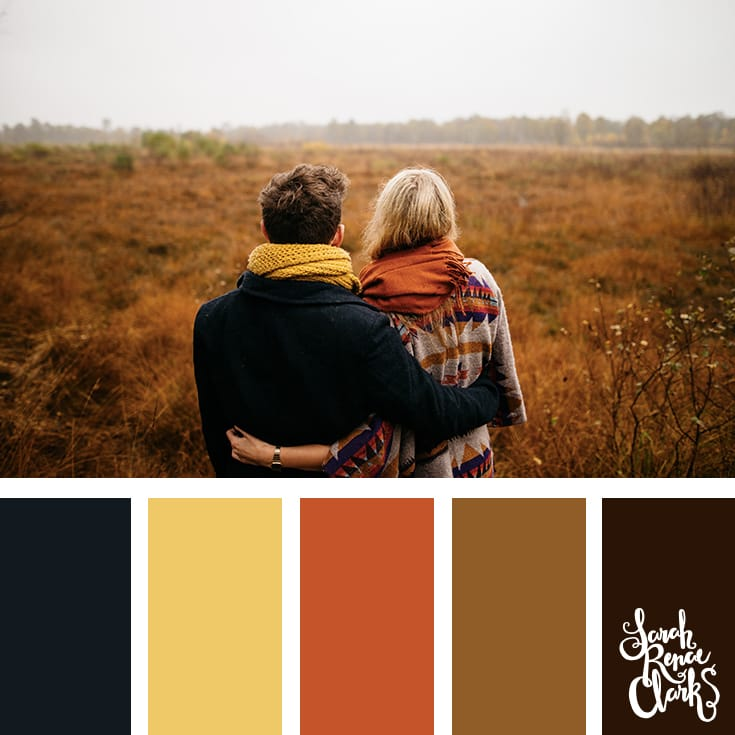 Field colors // Winter Color Schemes // Click for more winter color combinations, mood boards and seasonal color palettes at http://sarahrenaeclark.com #color #colorscheme #colorinspiration
