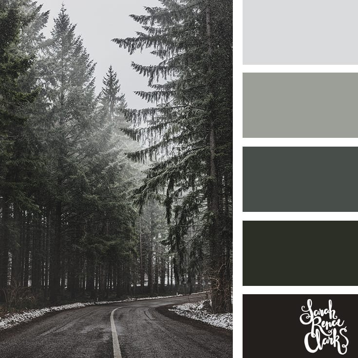 Forest hues // Winter Color Schemes // Click for more winter color combinations, mood boards and seasonal color palettes at http://sarahrenaeclark.com #color #colorscheme #colorinspiration