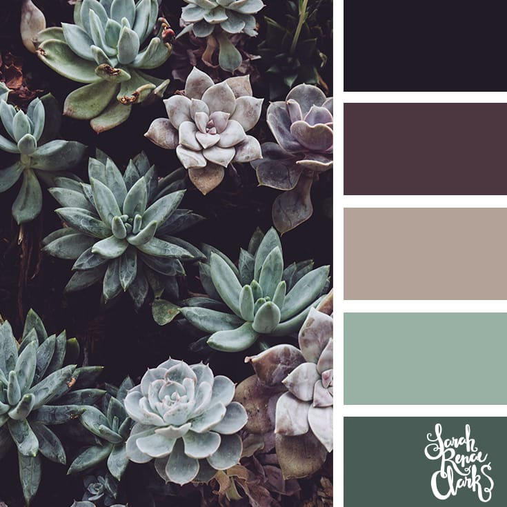 Succulent colors // Winter Color Schemes // Click for more winter color combinations, mood boards and seasonal color palettes at http://sarahrenaeclark.com #color #colorscheme #colorinspiration