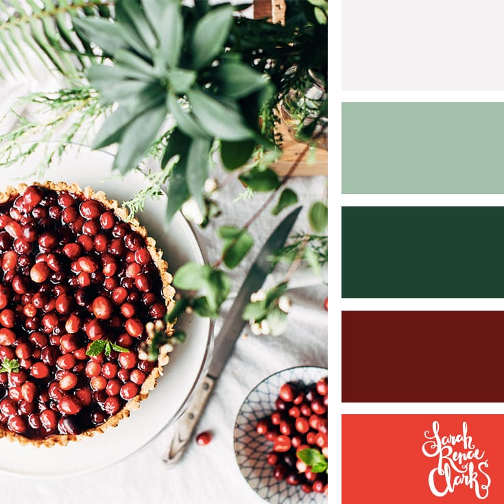 Berries red color scheme // Christmas Color Schemes // Click for more Christmas color palettes, mood boards and color combinations at https://sarahrenaeclark.com #color #colorscheme #colorpalette