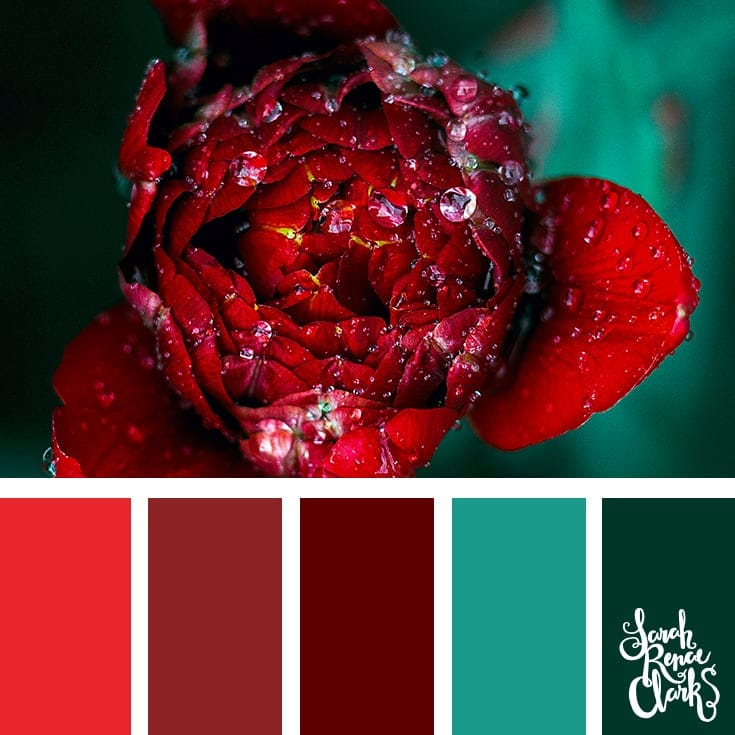 Red and teal color inspo | 25 color palettes inspired by the PANTONE color trend predictions for Spring 2018 - Use these color schemes as inspiration for your next colorful project! Find more color palettes, mood boards and schemes at www.sarahrenaeclark.com #color #colorpalette