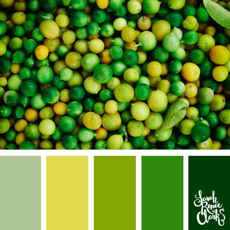 Greenery | 25 color palettes inspired by the PANTONE color trend predictions for Spring 2018 - Use these color schemes as inspiration for your next colorful project! Find more color palettes, mood boards and schemes at www.sarahrenaeclark.com #color #colorpalette