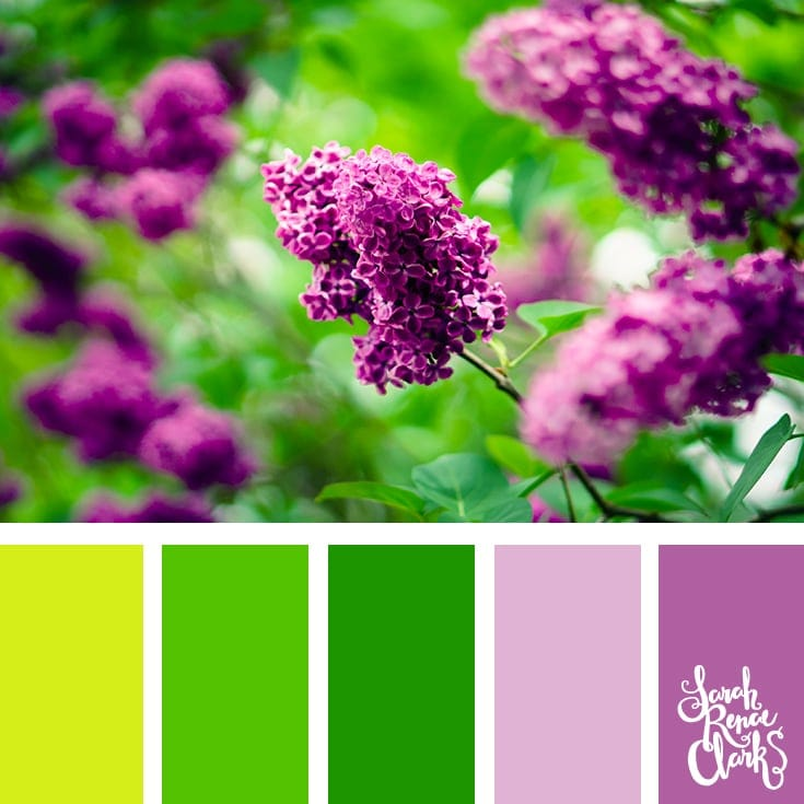 Nature colors | 25 color palettes inspired by the PANTONE color trend predictions for Spring 2018 - Use these color schemes as inspiration for your next colorful project! Check out more color schemes at www.sarahrenaeclark.com #color #colorpalette