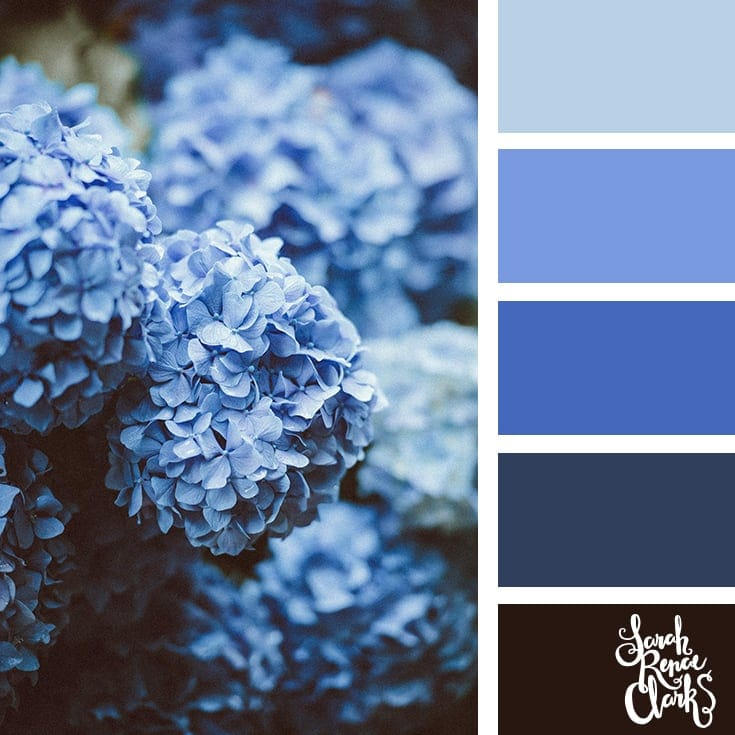 Blue color scheme | 25 color palettes inspired by the PANTONE color trend predictions for Spring 2018 - Use these color schemes as inspiration for your next colorful project! Check out more color schemes at www.sarahrenaeclark.com #color #colorpalette