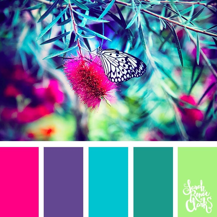 Spring color ideas | 25 color palettes inspired by the PANTONE color trend predictions for Spring 2018 - Use these color schemes as inspiration for your next colorful project! Check out more color schemes at www.sarahrenaeclark.com #color #colorpalette
