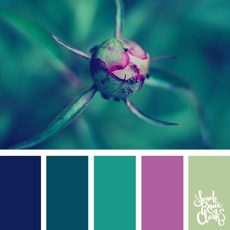 Teal and purple color scheme | 25 color palettes inspired by the PANTONE color trend predictions for Spring 2018 - Use these color schemes as inspiration for your next colorful project! Check out more color schemes at www.sarahrenaeclark.com #color #colorpalette
