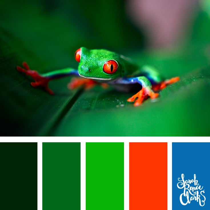 Green frog color palette