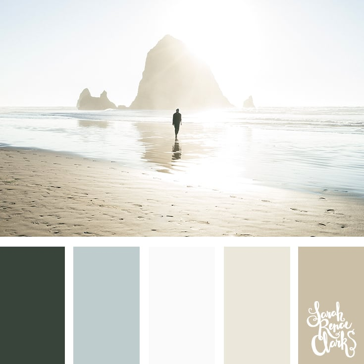 Moody beach color palette