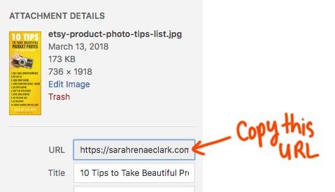 Wordpress image URL