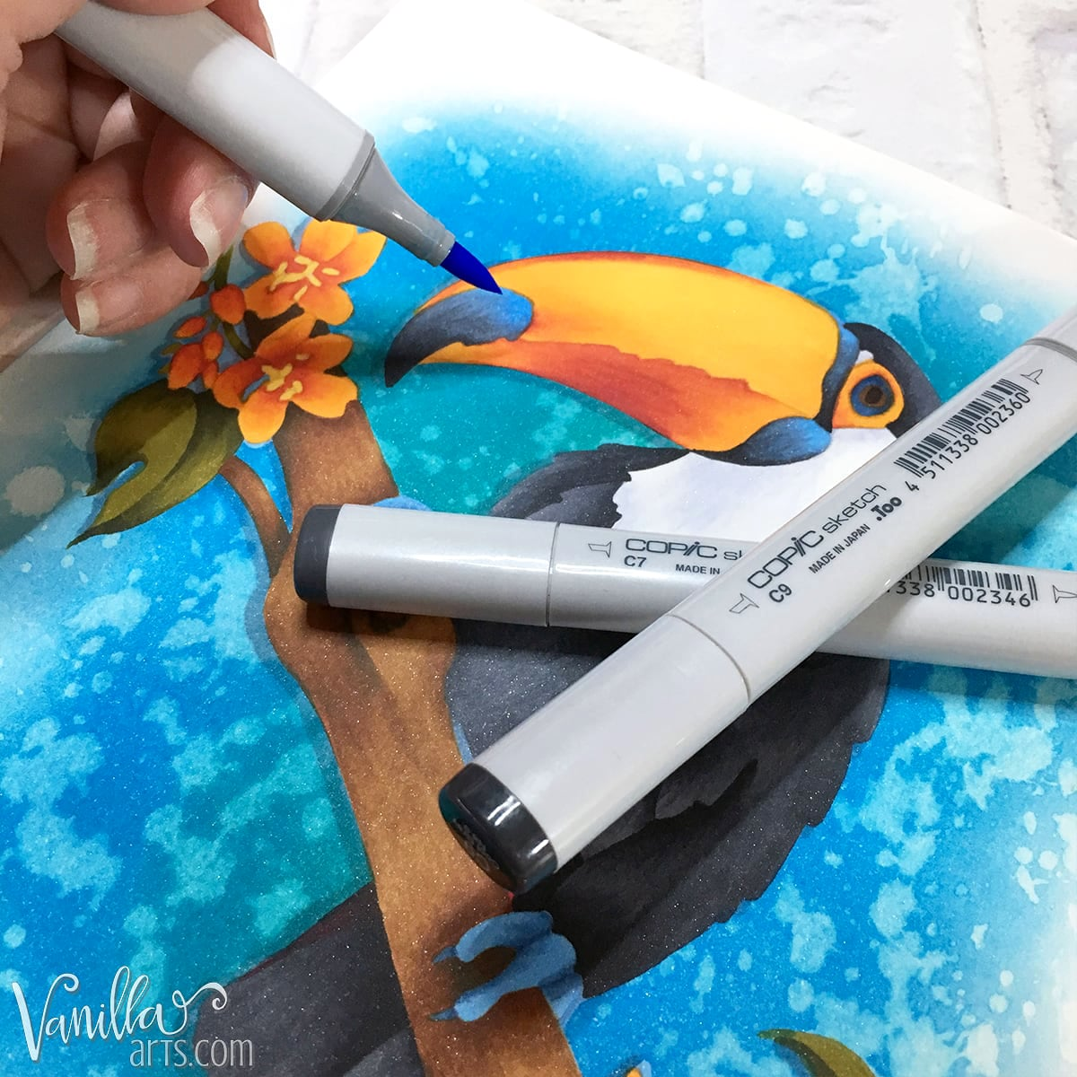 Copic Marker color combinations: The blending combination here is C9, C7, and B32.