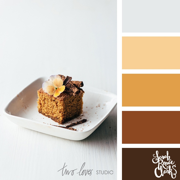 Chocolate browns color scheme