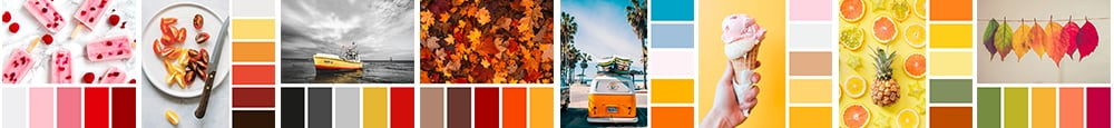 color palette, color scheme, color combination