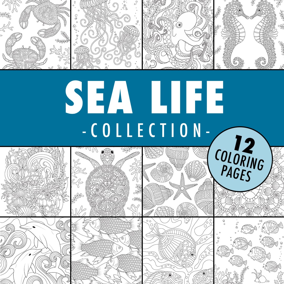 sea life coloring page collection
