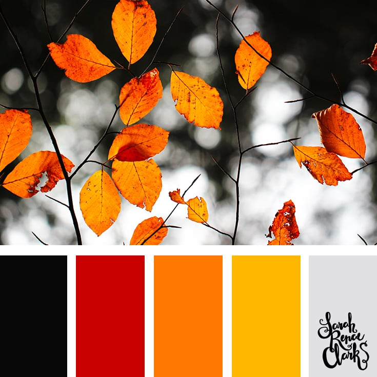 Color Palette - red, orange, yellow, black