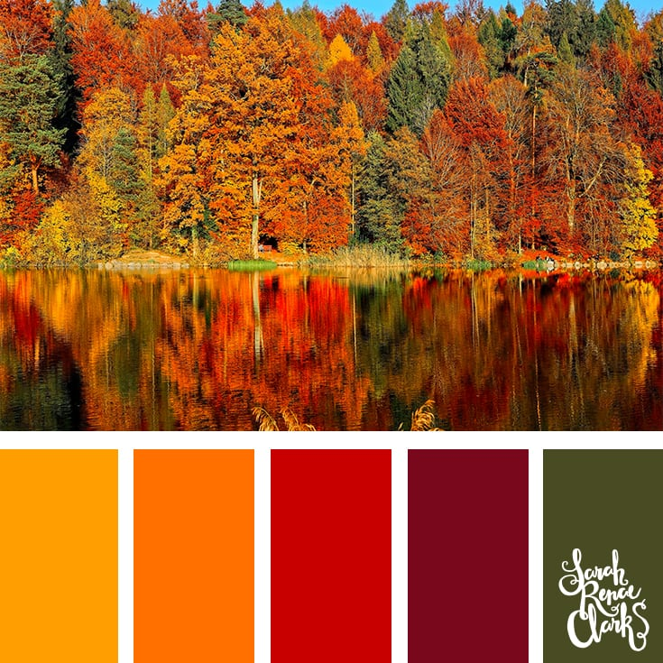 Color Palette - orange, red, green