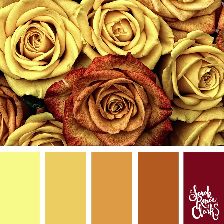 Color Palette - yellow, orange, brown