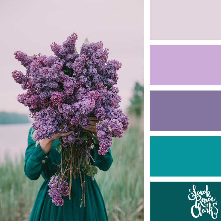 Color Palette - Purple, lilac, teal