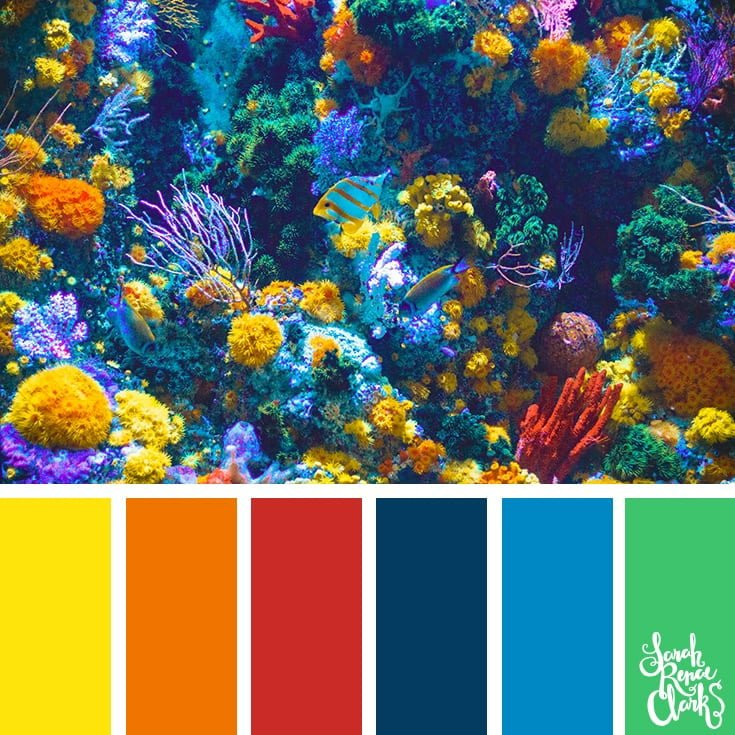 Coral reef color inspiration - color palettes, color schemes