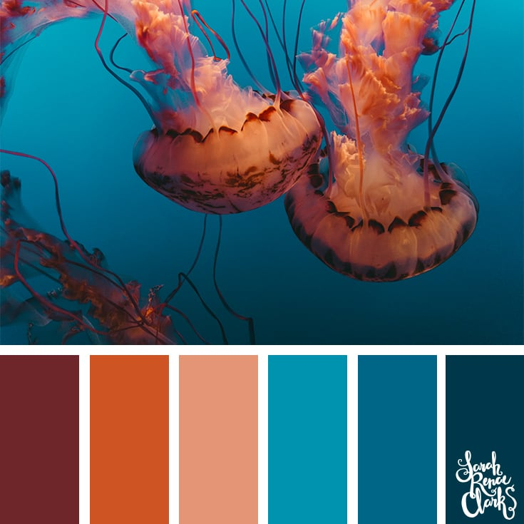 Ocean life color inspiration - color palettes, color schemes