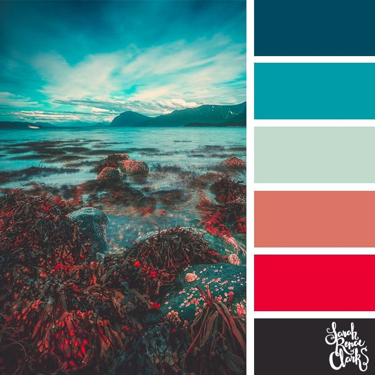 Ocean color palette - color palettes, color schemes