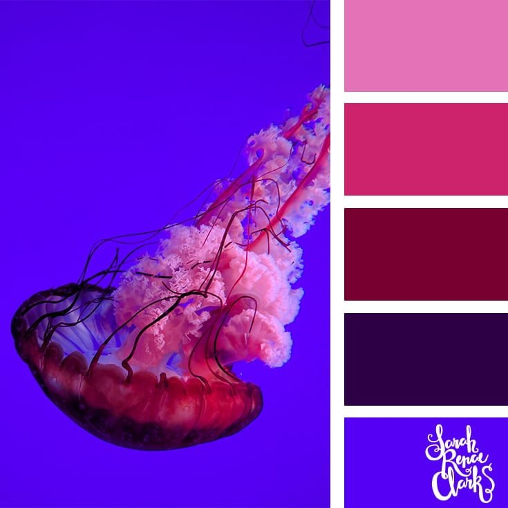 Pink and blue colors - color palettes, color schemes