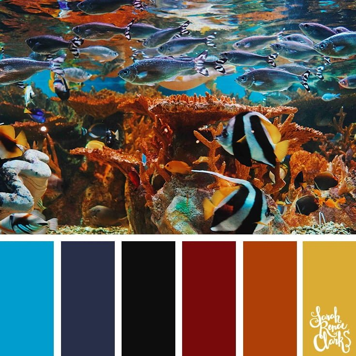 Underwater color inspo - color palettes, color schemes