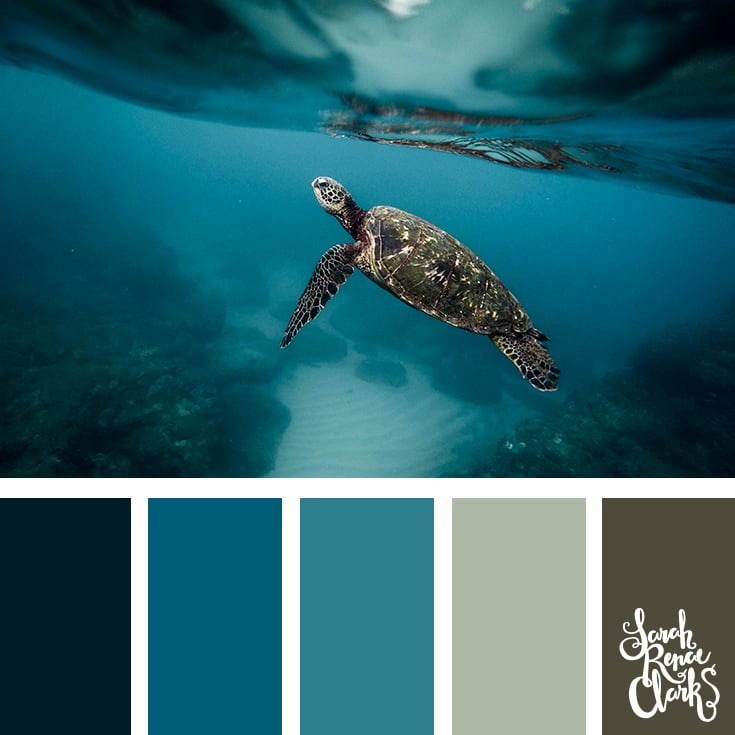 Teal color scheme - color palettes, color schemes