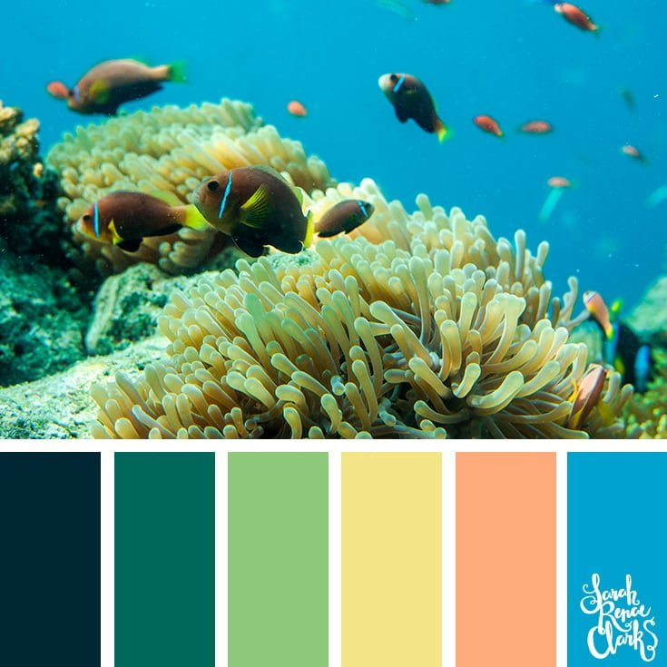 Underwater bright colors - color palettes, color schemes