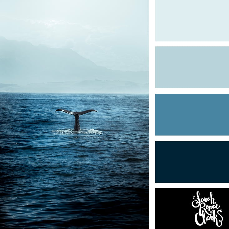 Ocean color combination - color palettes, color schemes