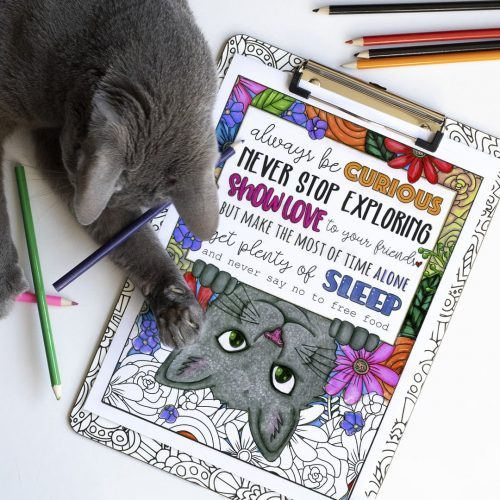 Cute cat coloring page. Colored by Michelle HH