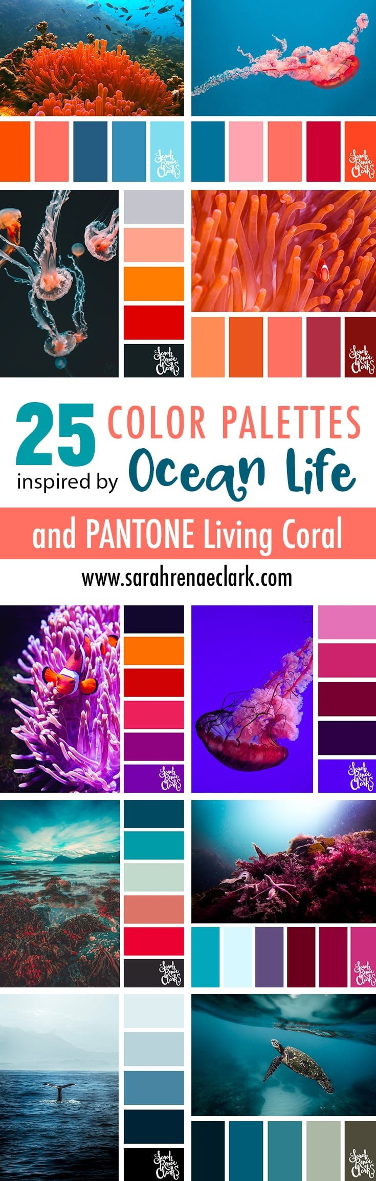 25 Color Palettes inspired by Ocean Life and PANTONE Living Coral