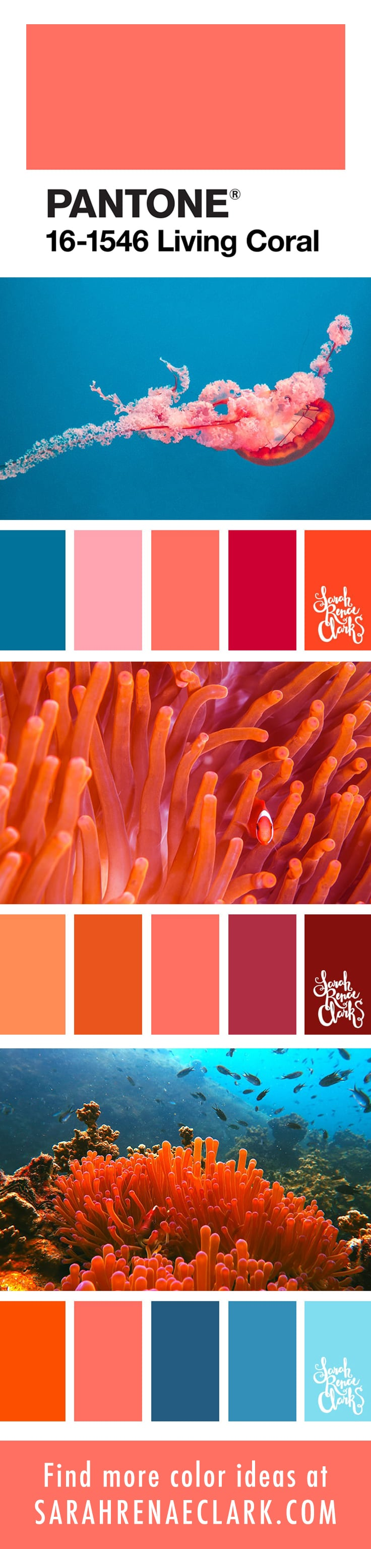 PANTONE Living Coral color schemes