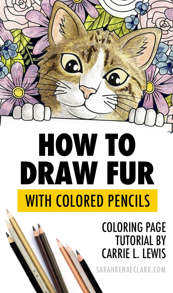 How to Draw Fur With Colored Pencils - Guest Tutorial by Carrie L. Lewis
