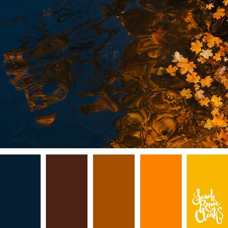 Color Palette 331 Blue Gold Sarah Renae Clark Coloring Book